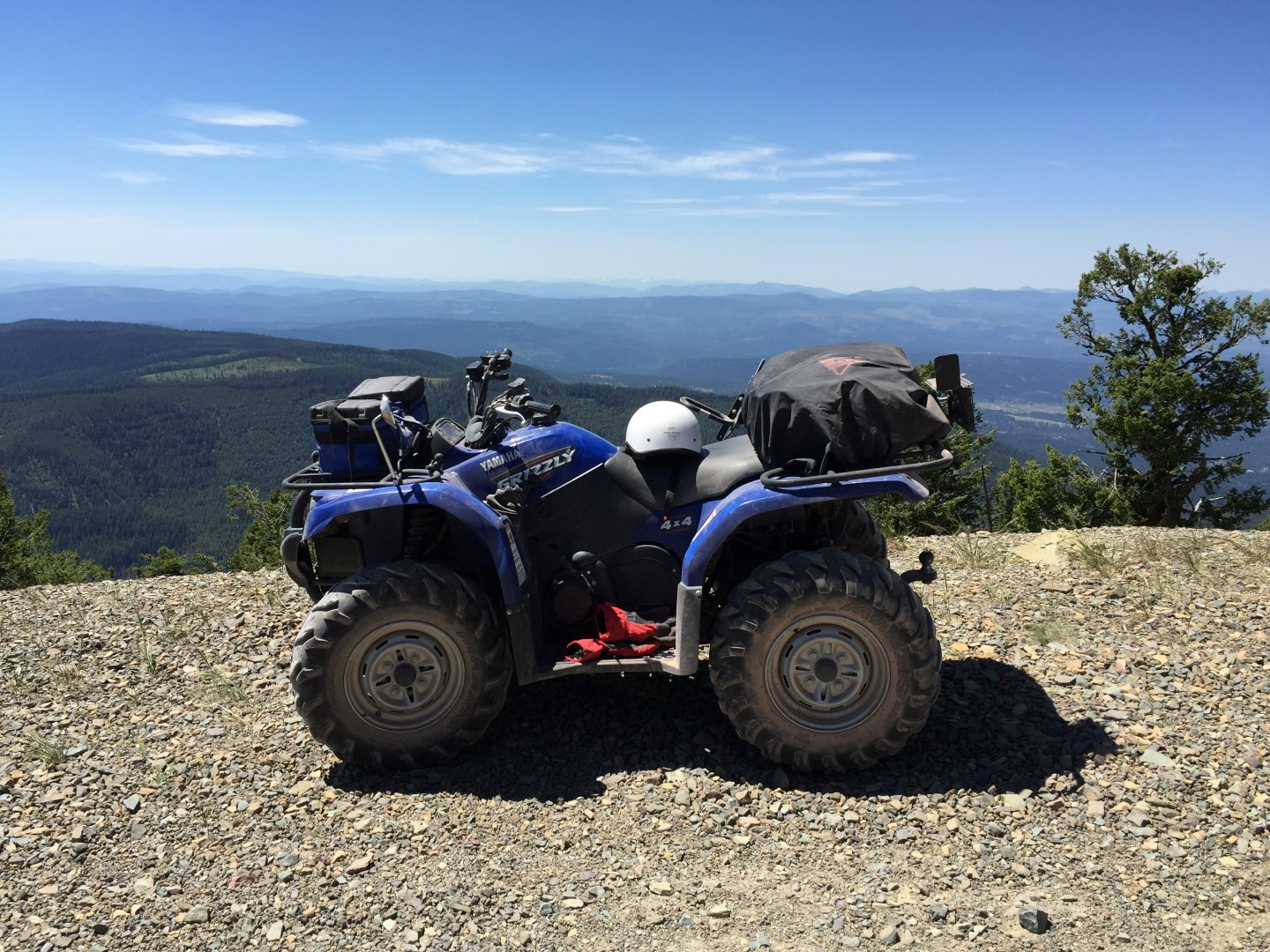 Yamaha Grizzly (Large)